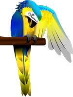 Macaw auf Stange Illu